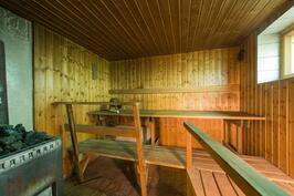 Sauna (puu)