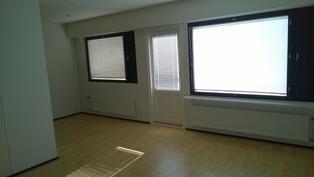 Olohuone ja ruokailutila, uusittu takapihan ovi.