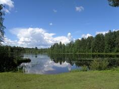 kiva uimapaikka Naulalammen rannalla