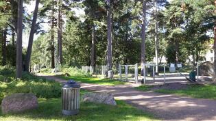 Koirapuisto 100 m.