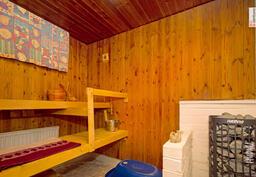 Tilava sauna ja näyttävä Harvia kiuas