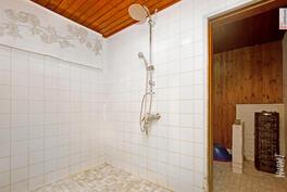 Pesuhuone ja taustalla sauna