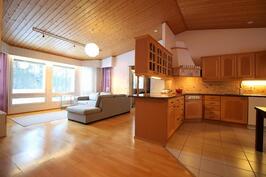 Olohuone/keittiö korotetulla katolla