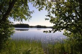 Arimaa -järveä