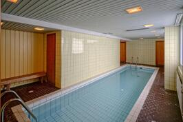 Talossa on sauna uima-altaineen