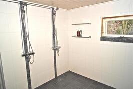 pesuhuone ja sauna remontoitu 2010