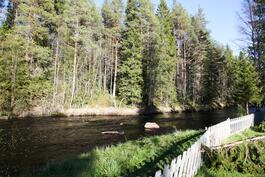 Piehinkijoki