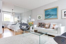 Olohuone ja makuuhuone