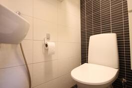 Saneerattu erillinen wc