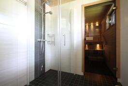 Saneerattu kylpyhuone