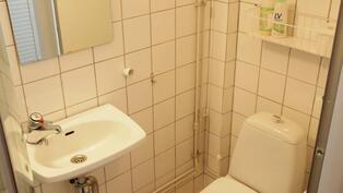 peshuoneessa Wc-istuin, pesuallas, peili ja suiku ja suihkukaappi