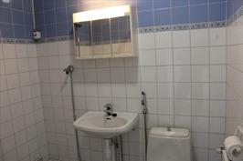 Pesuhuone ja wc laatoitettu