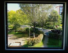 ihana puistonäkymä keittiön ikkunasta