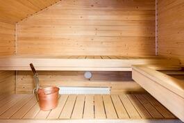 Nopeasti lämpenevä sauna sähkökiukaalla.