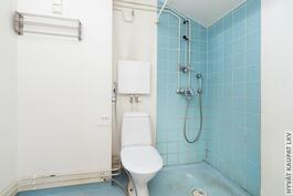Yläkerran pesuhuone/WC