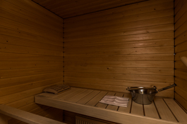 paneloitu sauna