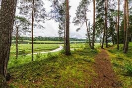 Kaunis luontopolku vie Sinut ihastuttavalle matkalle jokivarteen.