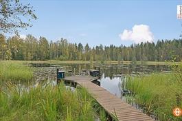 Alanenjärvi
