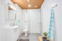 Kuvat aiemmasta vastaavasta asunnosta, tässä asunnossa kylpyhuoneessa maalattu levykatto