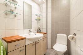 Erillinen wc (2).