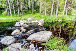 Jokiuomaa on padottu ja pengerretty, ELY-keskuksen luvanvaraisesti