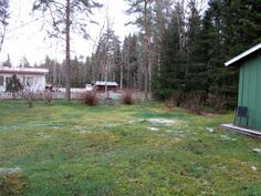 Takapihalla marjapensaita. Piha rajoittuu Kallenpuistoon.