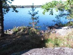pihasta järvelle