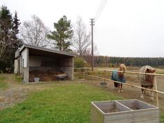 Hevostalli ja lantala