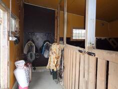 Tallissa 2:lle hevoselle boxit