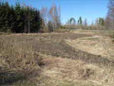 Kiinteistöön kuuluvaa pelto-aluetta