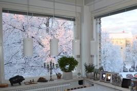 Omistajan kuva Rajakadun talvimaisemasta