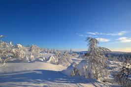 Saariselän talvimaisemaa