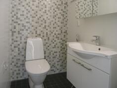 Erillinen WC, takaseinällä näyttävä kuviolaatta