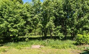 Takapiha rajoittuu puistoon, jossa hyvät puitteet vaikka lasten pihapeleihin.