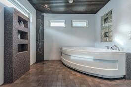 Kylpyhuone remontoitu v. 2015.