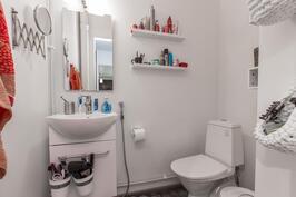 Alakerran wc on täysin remontoitu