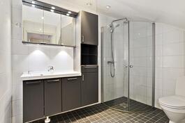 Alakerran kylpyhuone eteisessä/ Nedre vån. badrum i tamburen.