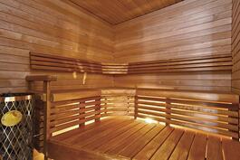 Näyttävä sauna/ Fin bastu.