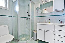 Asuinkerroksen suihkullinen wc/ wc med dusch