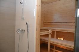Sauna asunto I