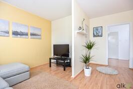 Olohuoneesta on erotettavissa televisionurkkaus tai makuuhuone.