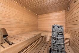 kellarikerroksen saunassa lauteet ja panelointi tervaleppää