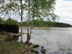 kylän uimaranta on talon tuntumassa