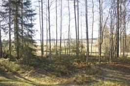 Näkymä pellolle