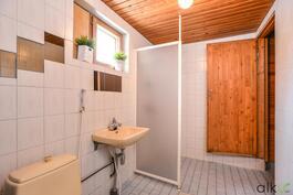 Siistikuntoinen kylpyhuone