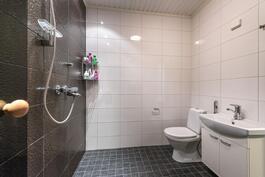 Ajattoman kauniit laattavalinnat kylpyhuoneessa