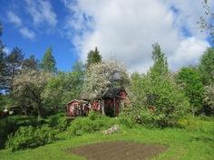 Mökin ulkovuoraus hyvässä maalissa ja aurinkoisella etelänpuoleisella etupihalla myös terassi!
