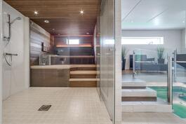 Upea sauna-/uima-allasosasto