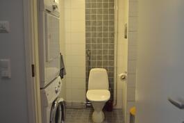 Kylpyhuoneessa pesukoneliitäntä ja wc-istuin