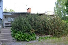 Taloyhtiöllä piharakennus missä on toinen, puulämmitteinen sauna